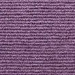 Broadrib Violet